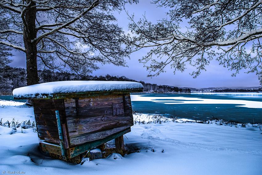 Przed oblotem należy wykonać na pasieczysku kilka prac: odgarnąć śnieg, sprawdzić wylotki czy nie są zatkane martwymi pszczołami, ustawić poidło, sprawdzić czy w ulu nie ma myszy.