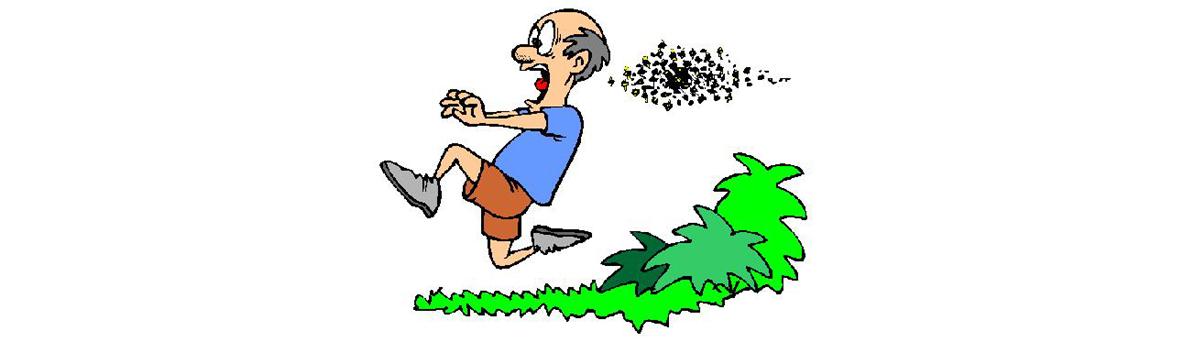 Ludzie często boją się pszczół i z tego powodu rezygnują z posiadania pasieki. jednak wystarczy przestrzegać kilku zasad podczas pracy przy ulach a praca z pszczołami przyniesie radość i korzyści. Jakie to zasaday? Dowiesz się kiedy przeczytasz wpis na blogu Oldskulowej Pasieki. Zapraszam.